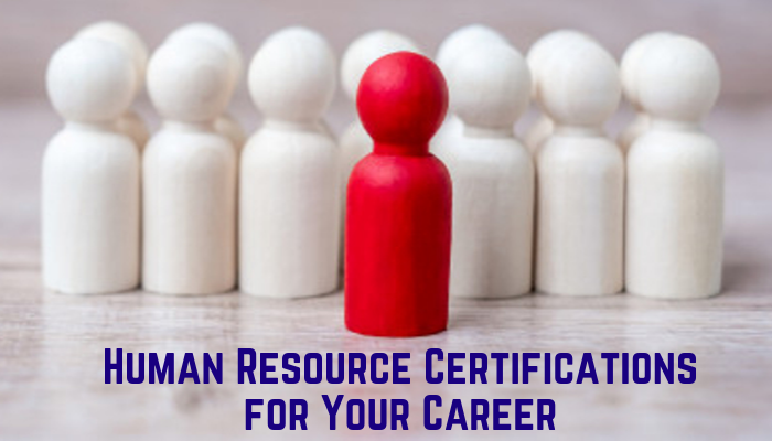 associate professional in human resources, aphr associate professional in human resources certification practice exams, human resource management exam questions and answers pdf, gphr, phr practice test, hrci certification, aphr, aphr certification, gphr certification, sphr practice test, aphr study guide, aphr practice test, shrm-scp study guide, aphr exam, phr sample questions, phr test questions, phr practice questions, phr certification practice test, sphr exam questions, shrm-scp, hrci practice tests, shrm-scp practice test, sphr sample questions, shrm exam questions, sphr practice questions, shrm-cp study guide pdf, sample shrm questions, shrm sample questions, shrm study guide, shrm-scp practice questions, shrm questions, hrci practice test, gphr sample questions, phr practice test questions, hrci certification online, hrci practice exams