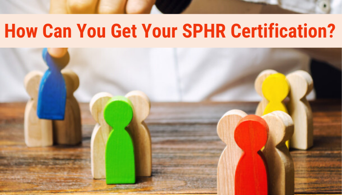 sphr, sphr practice test, sphr practice questions, sphr exam questions, sphr sample questions, free sphr practice test, sphr questions, sphr test questions, sphr test, sample sphr questions, sphr practice test online free, sphr practice exam, sphr practice tests, sphr practice test free, sphr sample test, sphr practice questions free, sphr certification, sample sphr exam questions, Senior Professional in Human Resources